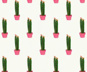background, cactus, and iphone image