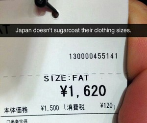 funny, japan, and fat image