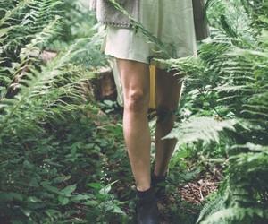 indie image
