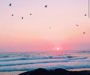 atardecer, beautiful, and evening image