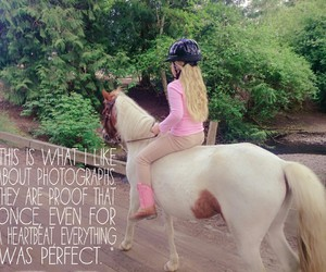 horses, photography, and quote image
