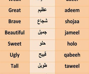 alphabet, arabic, and learn image