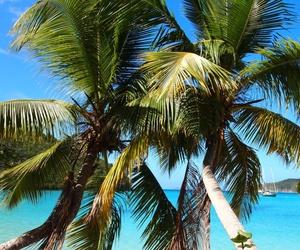 beach, bikini, and ocean image