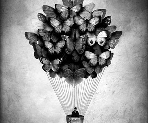 art, butterfly, and hot air balloon image