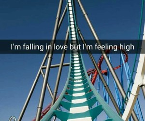 feeling, rollercoaster, and sheikra image