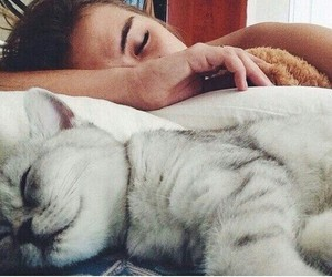 girl, meow, and cute image