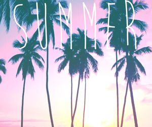 palm trees, summer, and vibes image