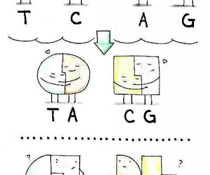 biology and DNA image