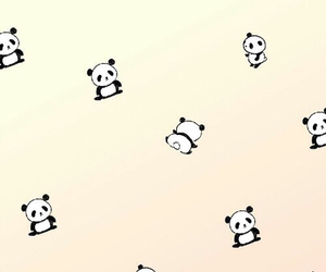 wallpaper, cute, and panda image