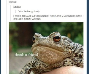 friend, frog, and funny image