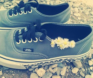 blues, vans, and flower image