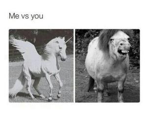 funny, unicorn, and lol image