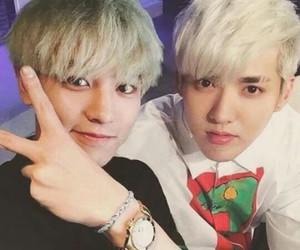chanyeol, exo, and kris image