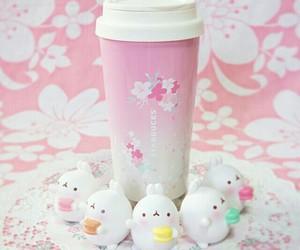 bunny, sakura, and chubby bunny image