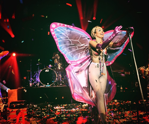 miley cyrus, butterfly, and miley image