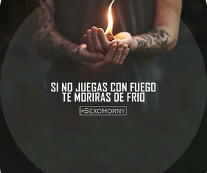 fire and frases image