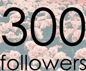 followers, 300, and 300 followers image