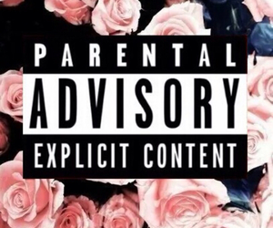 parental advisory, pink, and roses image