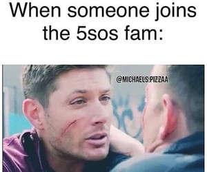 5sos and 5sos fam image