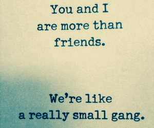 friends, gang, and quote image