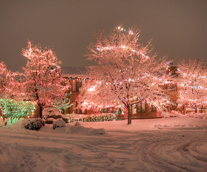 snow, christmas, and light image