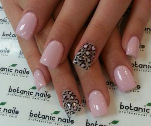 nails, pink, and botanic nails image