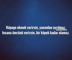 Image by Büşra