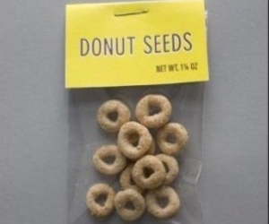 donuts, seeds, and funny image