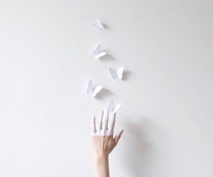 hand, butterfly, and white image