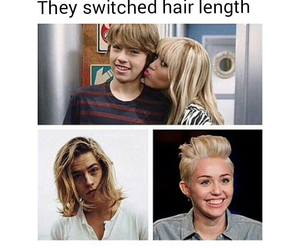 hair, funny, and miley cyrus image