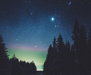 stars, forest, and sky image