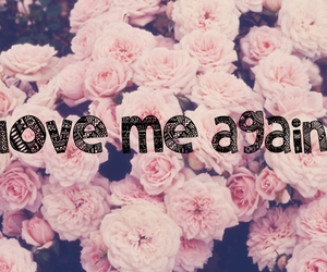 flowers, hipster, and love me again image