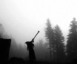 forest, Darkness, and fog image