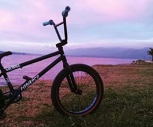 bike, bmx, and pink image