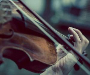 violin, music, and música image