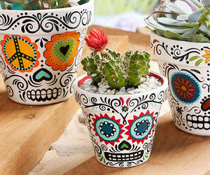 colourful, flower pots, and skulls image