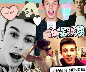 Collage, ♥, and shawn mendes image