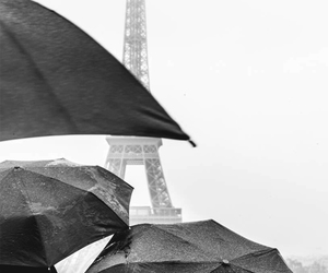 black and white and paris image