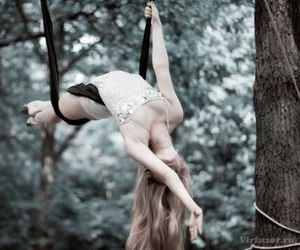 aerial, dance, and flexibility image