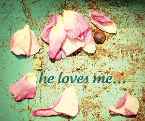 flowers, pink, and words image