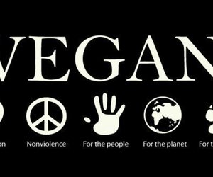 vegan, animal, and veganism image
