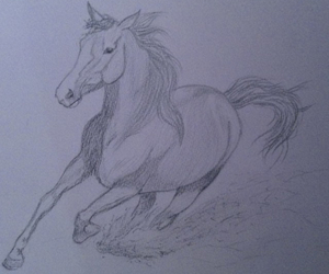 draw, horse, and selfmade image