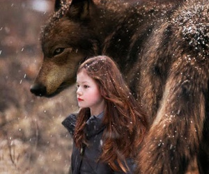 twilight, renesmee, and breaking dawn image