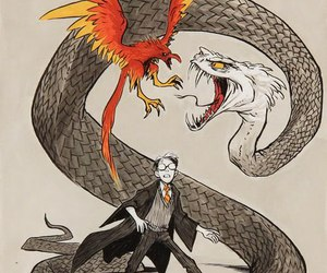 harry potter, phoenix, and basilisk image