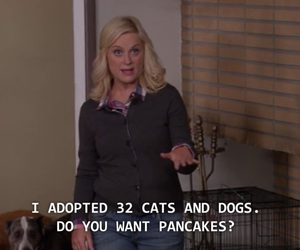 actress, blonde, and cats image