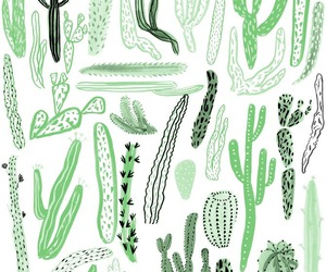 cactus, drawing, and green image