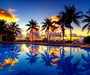 pool, summer, and sunset image