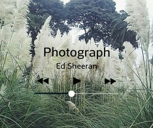 ed, music, and nature image