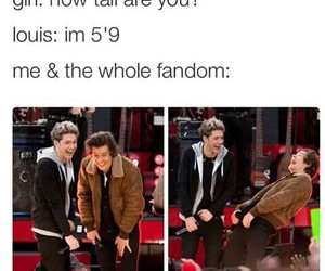 funny, liam payne, and niall horan image