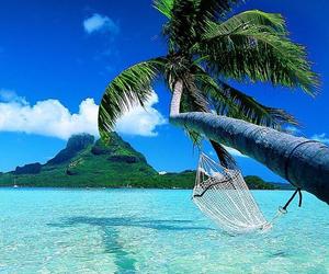 beach, hammock, and ocean image